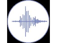 Диктофоны и аудиорегистраторы
