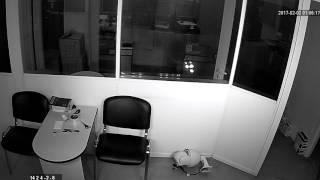 Видеокамера IP IVM-1424-2.8, офис, ночь, ИК подсветка